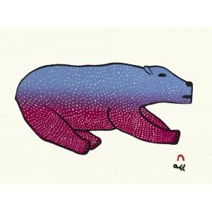 28 - MALAIJA POOTOOGOOK 1971-2021 - Bounding Bear