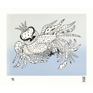 31 - OOLOOSIE SAILA 1991 - Besotted Owl