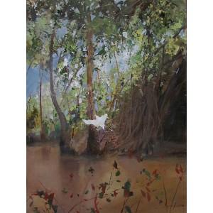 JIMMY PERRON 1971 - Landscape, Vietnam